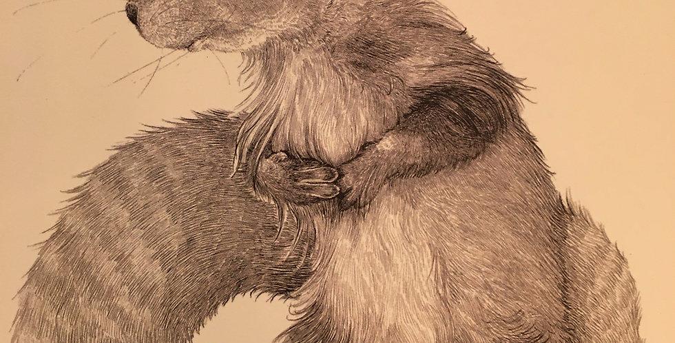 'Squirrel' Greetings Card