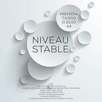 poster NIVEAU.jpg