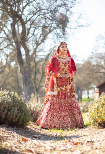 Sacramento Punjabi Wedding-2.jpg