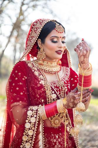 Sacramento Punjabi Wedding-32.jpg