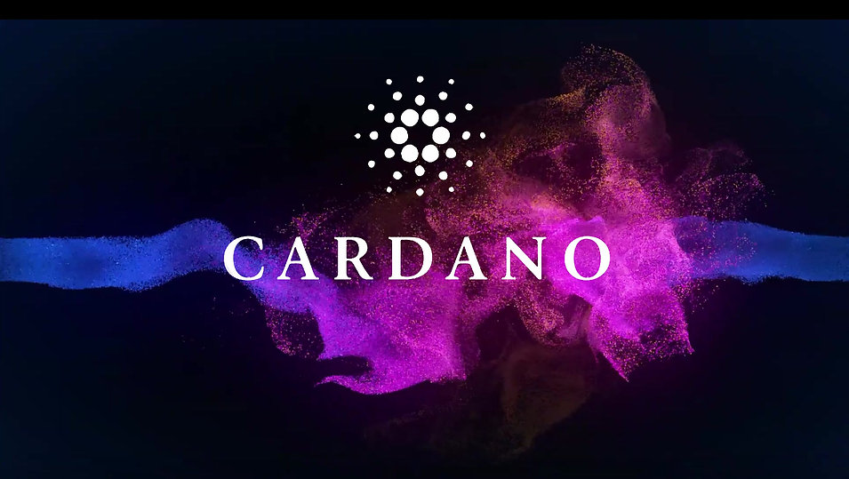 Cardano Staking Video