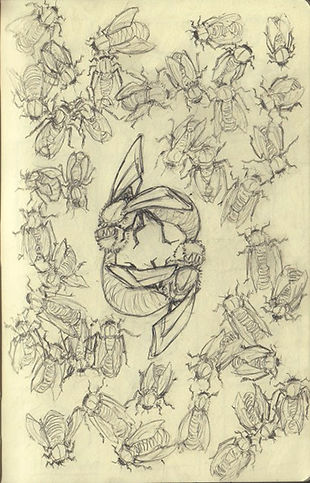 Liam Riddle Illustration