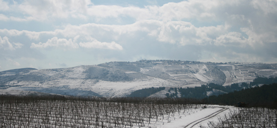 טיולי יין - טיול ליקב יראון בצפון
