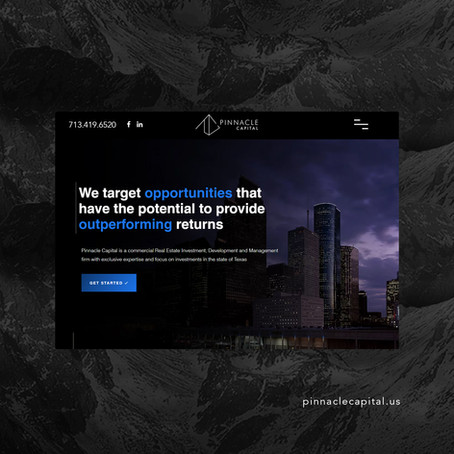 Website/Brand Launch