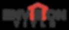 Envision_Title_Logo3.png