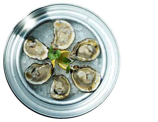 oysters_bg3.png