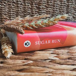 Sugar Run - Mesha Maren