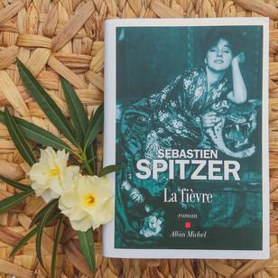 La Fièvre - Sébastien Spitzer