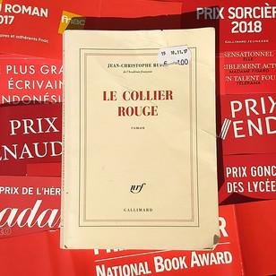 Le Collier rouge - Jean-Christophe Rufin