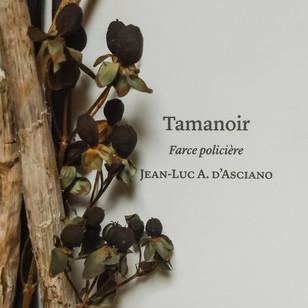 Tamanoir - Jean-Luc A. d'Asciano