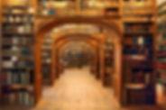 8D-1000-Bibliothek3-Pech_1.jpg