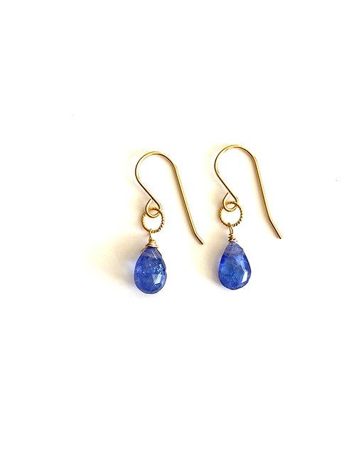 Tanzanite Earrings on Gold