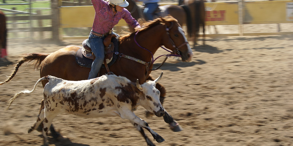Rodeo Timed Events - Round 1 and 2 - Postponed due to Covid-19