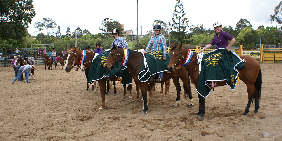 South East Queensland Team Penning Championships