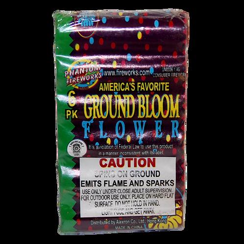 Ground Bloom Flower (6 pack)