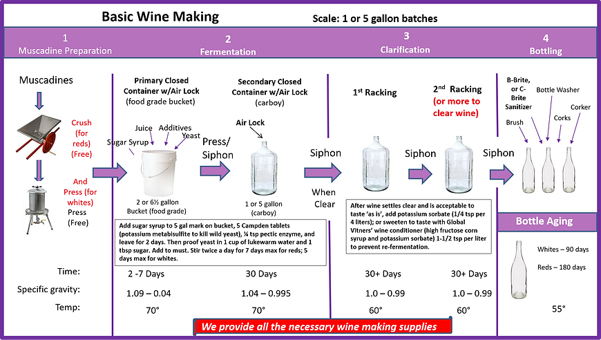 wine process.png