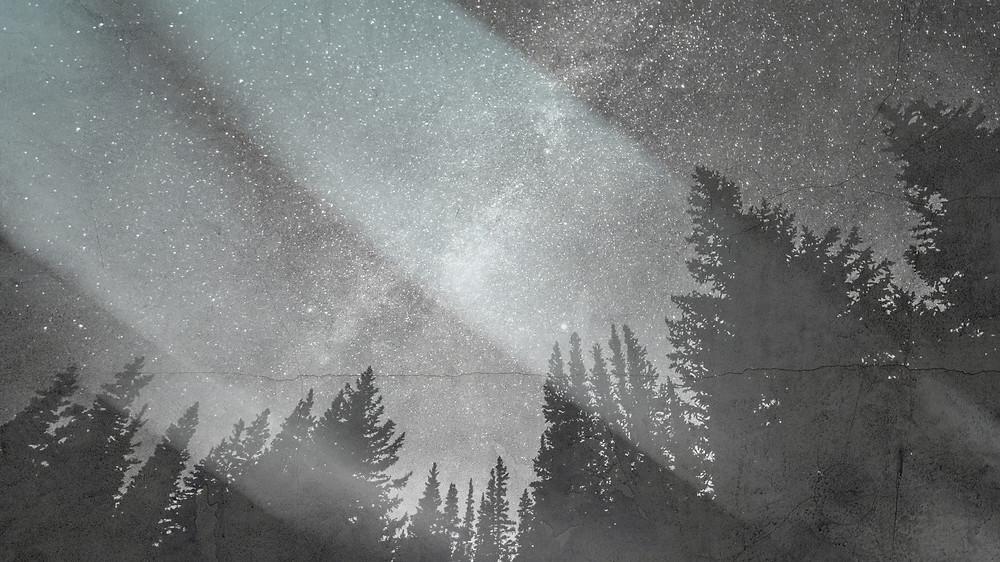 Unsplash photo digitally altered by Jacqueline Stuart