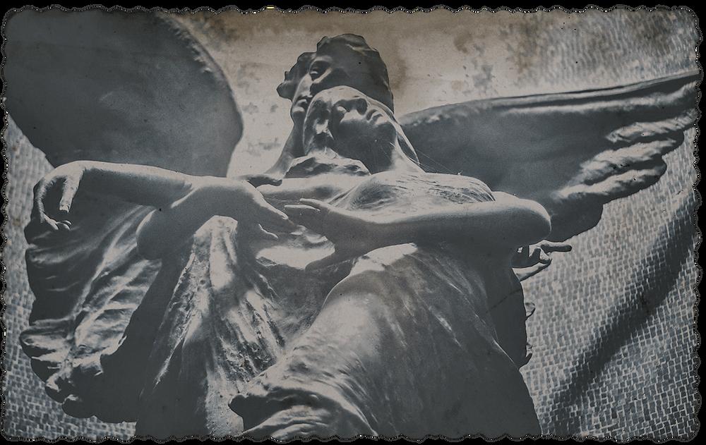 Angel's Embrace | Dreams nad Shadowlands | Jacqueline Stuart