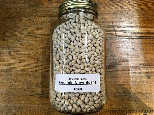 Beans- Navy (dried/1Lt jar)