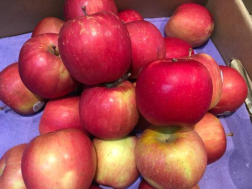 Apples Fuji (6/bag)