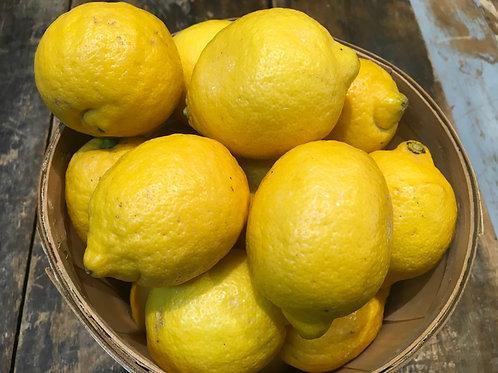Lemons /EA