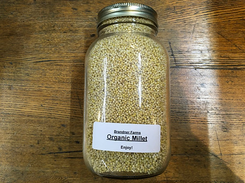 Millet (dried/1Lt jar)