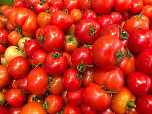 Tomato Campari/Lb