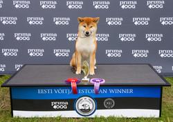 Missy as Best Puppy at Estonian Winner 2019