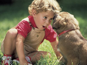 Our Pets: Caring for Us and Caring for Them