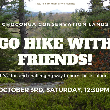 Hike Chocorua Conservation Land 10/03/2020