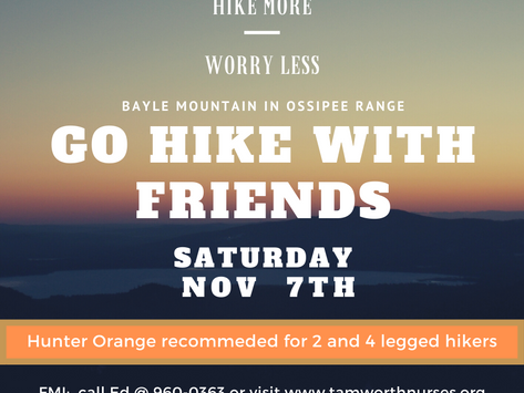 GO HIKE WITH FRIENDS 11/07/2020