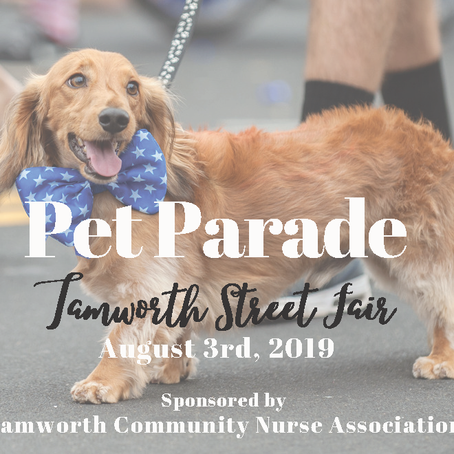Pet Parade - Tamworth Street Fair