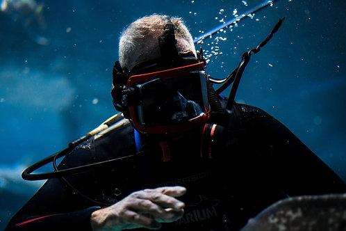 Public Safety SAR Diver