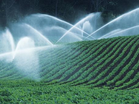 Premio Nazionale Innovazione 2020: Vince AgroMateriae, che rende green gli scarti agroindustriali