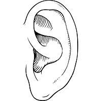 ear-clipart-line-591422-8494382.jpg