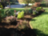 Tree and Shrub Plantings
