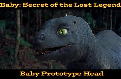 Baby Head.webp