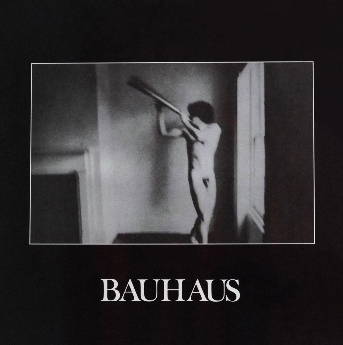 Bauhaus - In the Flat Field (4AD, 1980).
