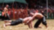 yaglı güreş 12.jpg