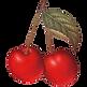 CherryFavicon.png