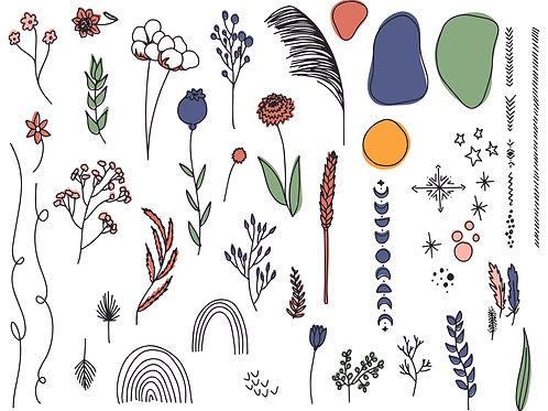 Boho Botanical Illustrations