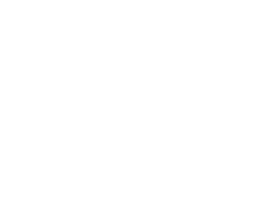 DunasHR_Logo_white.png