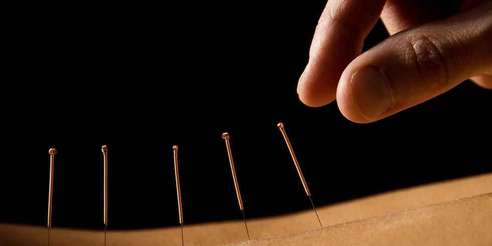 Praxis Kompakt Akupunktur