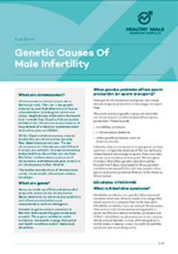 Genetic Causes of Male Infertility
