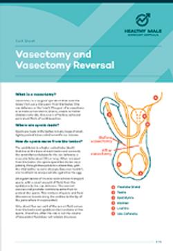 Vasectomy and vasectomy reversal