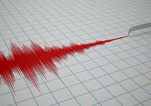 התנהגות ברעידות אדמה