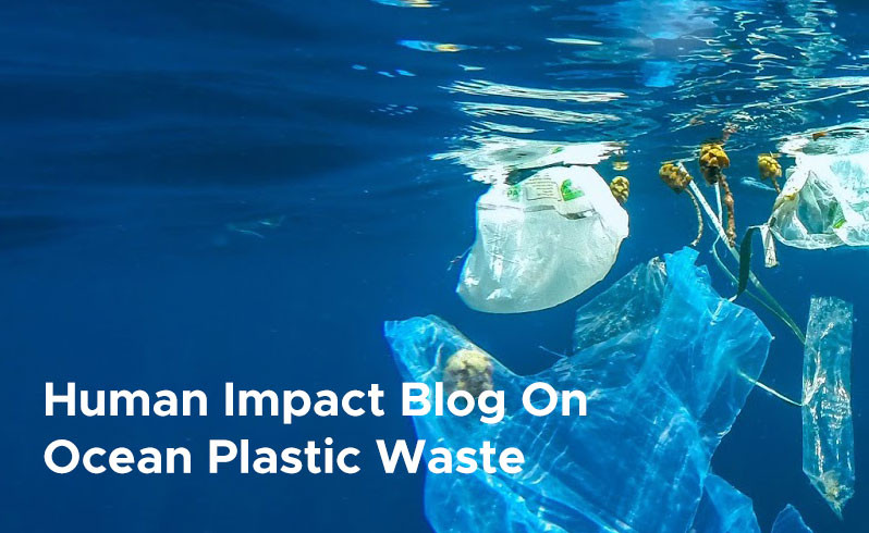 Human Impact Blog On Ocean Plastic Waste 