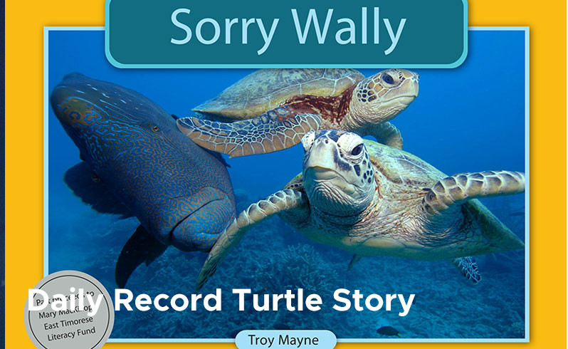 Daily Record Turtle Story