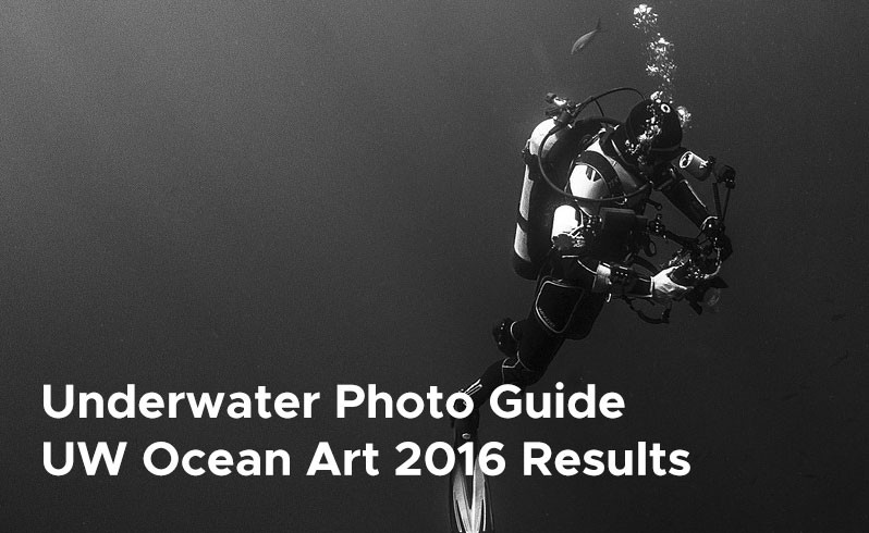 Underwater PhotoGuide UWOcean Art 2016 Results