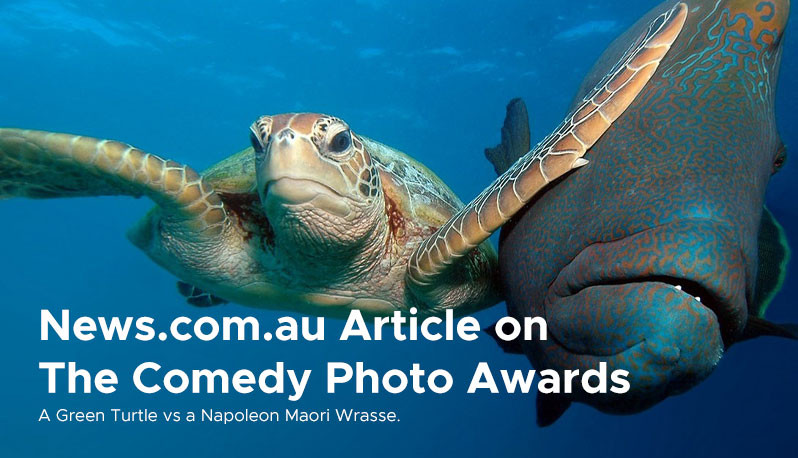 News.com.au Article on The Comedy Photo Awards 